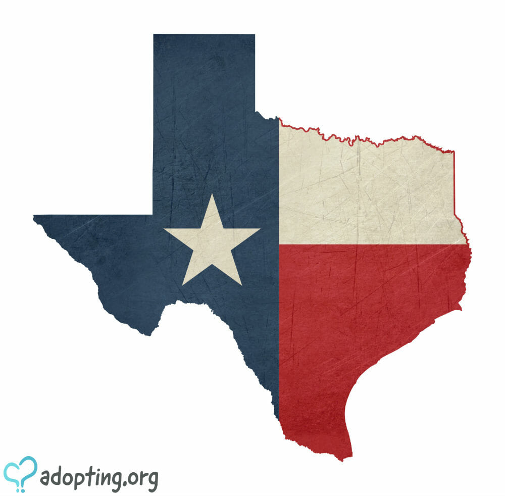 Adoption in Texas is a journey much like the adoption journeys you will see nationally. Yet, Texas, with its uniqueness and charm also has its own...