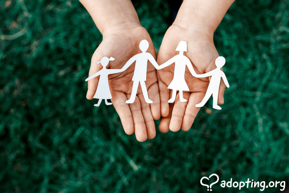 American adoptions, often referred to as domestic adoptions, have changed a great deal in the past decade. Adoptions from foster care, domestic infant...