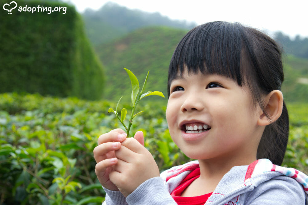The land of tea and giant pandas used to be a hotspot for infant adoptions... Here are some things you need to know before pursuing a China adoption.