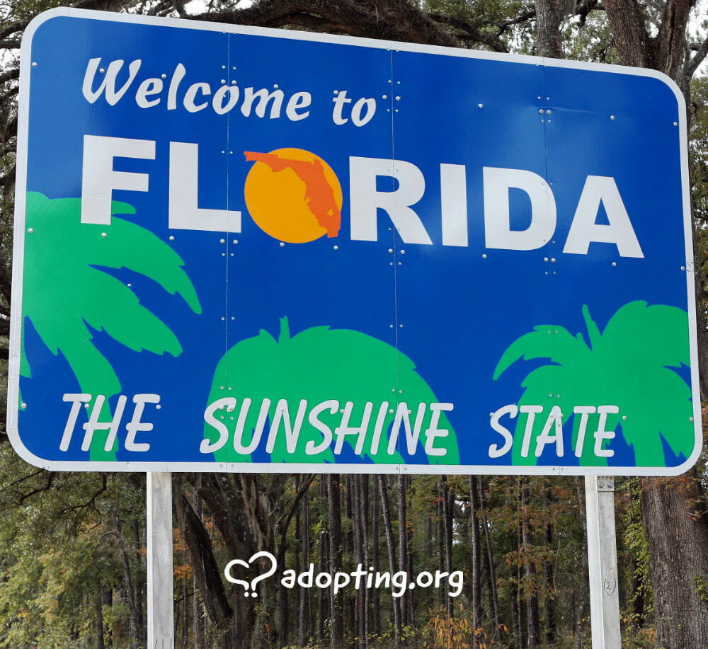 If you are seeking an adoption in Florida, there is a lot of information you need to know to complete the process. Adoption in Florida is very...