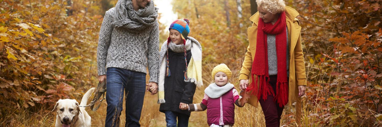 adopting a child in Ohio