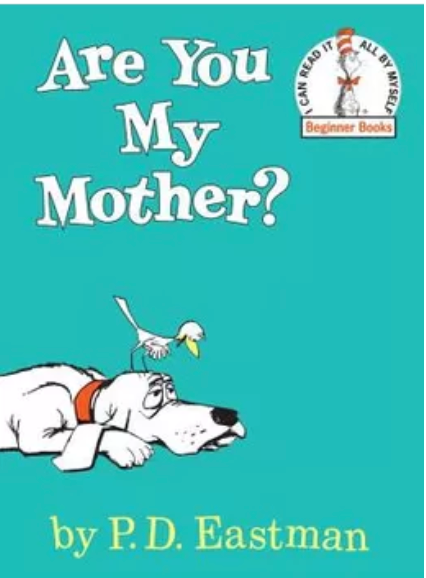 "The children's book ""Are You My Mother?"" raises questions about identity, including those related to adoption."